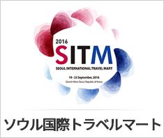 일문-SITM